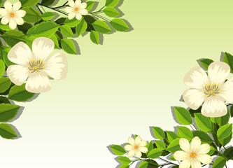 White flower card template