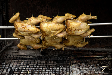 close up chickens grilled in arow in street of Bangkok, Thailand