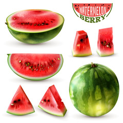 Watermelon Realistic Set