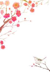 梅の花 寒中見舞い 年賀状 ウグイス