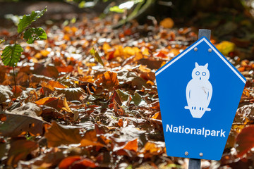 "Blue sign of a german national park in front of autumn leaves lying on the ground blue sign of a german national parc on front of a coastline with german lettering ""nationalpark"" means national parc"