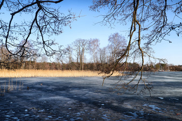 Landscape with lake covered with ice and trees around with Sunny day