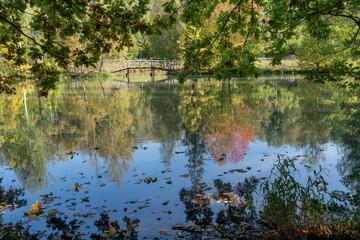 Осень в старинном парке. Природа средней полосы России..