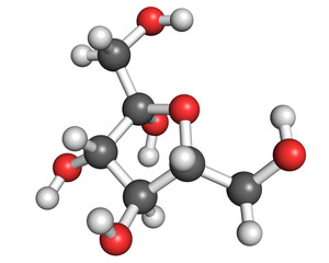 Fructose molecule, ball and stick model. Shown in its most common form in aqueous solution - fructofuranose.