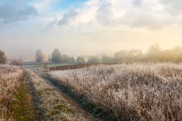 country road uphill through meadow with frozen grass. distant trees in fog. amazing sunny morning weather