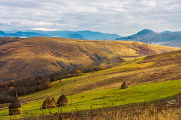 haystacks on the rural fields. lovely countryside scenery in mountains. distant mountain with snowy top under the overcast november sky