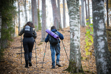 Nordic walking. Little boy and young woman. Back view. Birch forest
