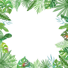 Watercolor frame tropical leaves and branches on white background.