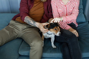Unrecognisable man and woman sitting on couch and cuddling cute dog.