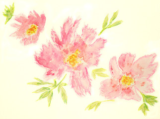 Pink flowers set Watercolor hand drawing isolated on white background