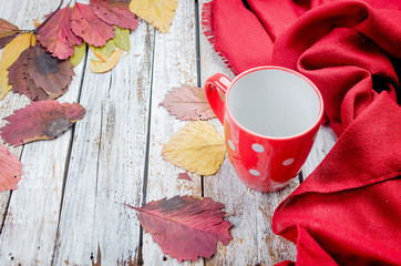 empty cup for tea, dry red leaves on autumn day