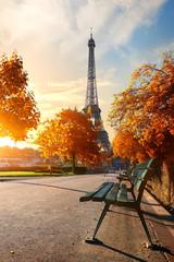 Wall Mural - Eiffel Tower in autumn