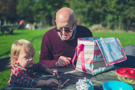 Toddler and grandfather having a picnic