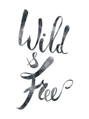 Wild and free brush pen lettering, Hand drawn watercolor typography card, inspirational phrase about freedom. Modern calligraphy, light design elements for prints and posters. Isolated on white.