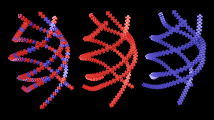 3D rendering,Abstract DNA red color compare with blue color and mix color on black background