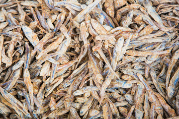 Stockfish at the street market in Colombo