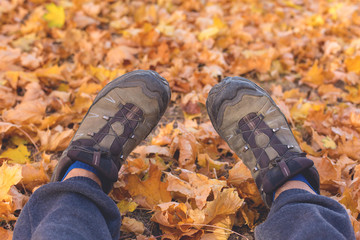 Red and Orange Autumn Leaves Background, Feet on a maple leaf carpet