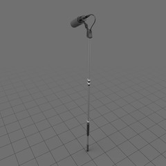 Microphone with boom