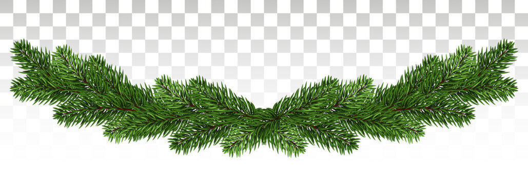 Christmas background with garland, New Year decoration with fir branches, beads and holly berry. A broad garland of pine branches. New Year. Vector. Eps10.