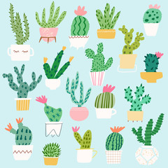 Vector cactus in pot illustration set. Cacti isolated