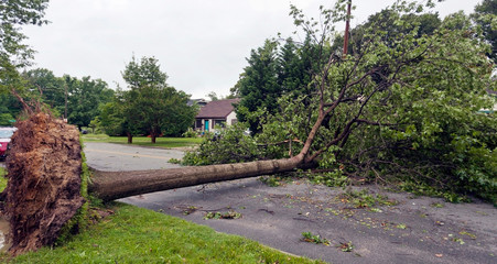Neighborhood storm damage aftermath.