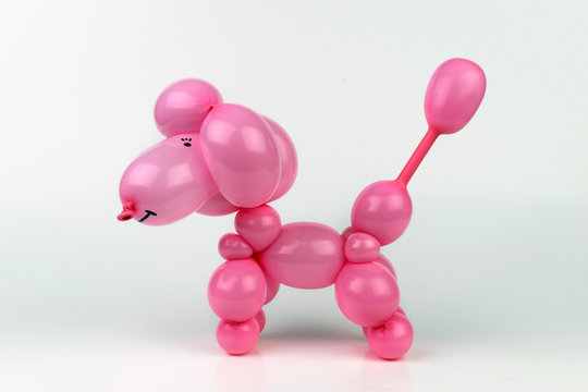 Cute pink twisted art balloon dog poodle