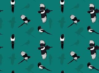 Bird Black-billed Magpie Wallpaper
