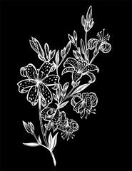 Wild summer lilium flowers, field lily bouquet.