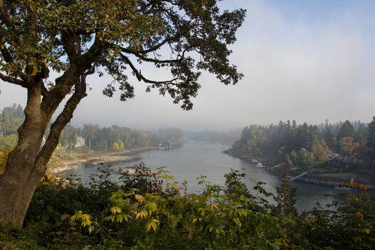 Morning fog over Willamette River in Lake Oswego, Oregon.