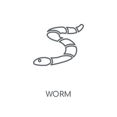 Worm linear icon. Worm concept stroke symbol design. Thin graphic elements vector illustration, outline pattern on a white background, eps 10.