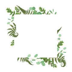 Vector card floral design with green watercolor, eucalyptus, forest fern, herbs, eucalyptus, branches boxwood, buxus, botanical green, decorative frame, square