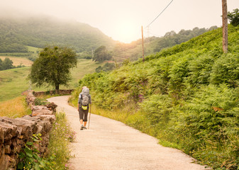 Lonely Pilgrim with backpack walking the Camino de Santiago in Spain, Way of St James Fotomurales