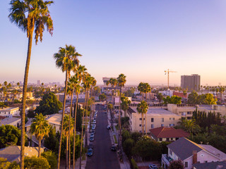 Wall Mural - Beverly Hills street with palm trees at sunset in Los Angeles with Hollywood sign on the horizon.