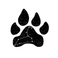 Lion's paw print t-shirt. Vector illustration.