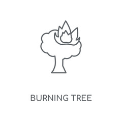 Burning Tree linear icon. Burning Tree concept stroke symbol design. Thin graphic elements vector illustration, outline pattern on a white background, eps 10.