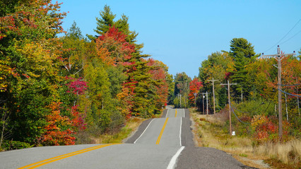 Scenic asphalt road running up and down and through the colorful deciduous trees
