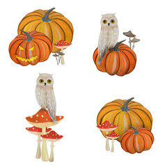 Gouache magic set with pumpkin and owl