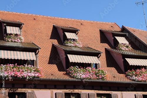 Etwas Neues genug Dachgaube mit Blumenkasten