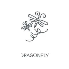 Dragonfly linear icon. Dragonfly concept stroke symbol design. Thin graphic elements vector illustration, outline pattern on a white background, eps 10.