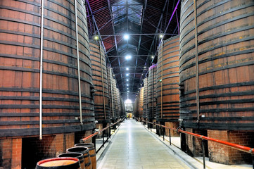 Interior of a large industrial wine cellar with huge oak barrels.
