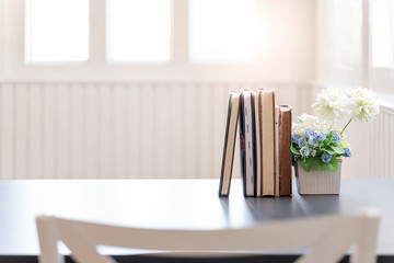 Row of books and houseplant on white wooden table in white room with sunlight