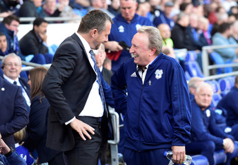 Premier League - Cardiff City v Fulham