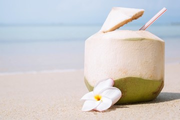 Fresh Coconut with drinking straw on the sand beach at the sea. tropical vacation travel concept