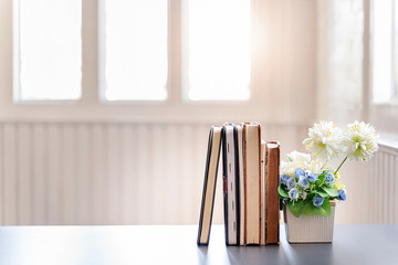 Row of books and houseplant on white wooden table in white room.