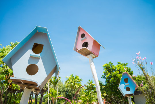 Colorful bird house in summer with sunny day blue sky - green nature background