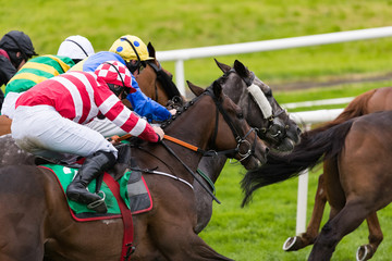 Close-up on horses and jockeys racing