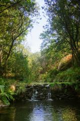 Waterfall Creek