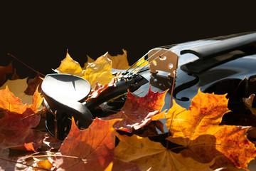 herbstliches Bild mit Ahornblättern in kräftigen Farben und dem Ausschnitt einer schwarzen Geige.