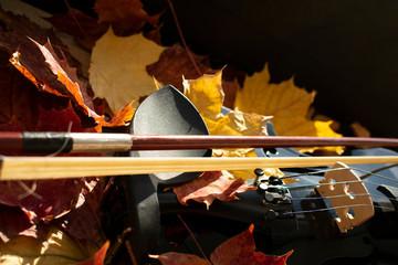 Ausschnitt einer schwarzen Geige in Ahornblättern