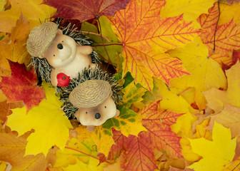 niedliche Tierfiguren von Igeln sitzt in einem Haufen aus Ahornblättern.